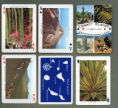 Playing cards - Canary Islands